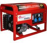 Бензиновый генератор DDE DPG7501E